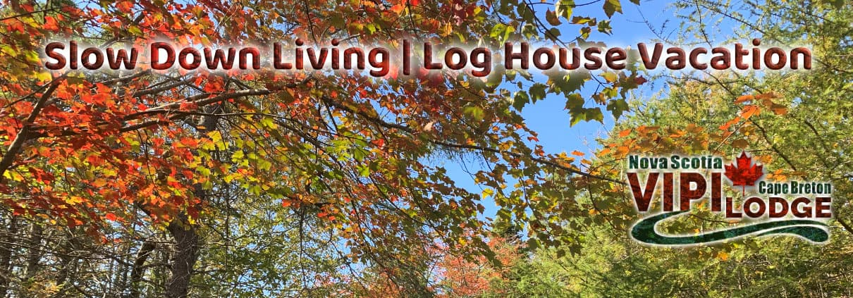Slow Down Living, Holiday home rental
